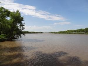 Der braune Rio Paraná, weit im Hintergrund die Hochhäuser von Rosario