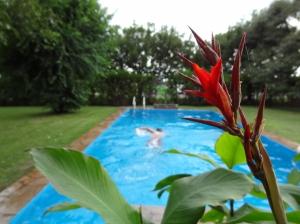 So ein Pool ist schon was schönes