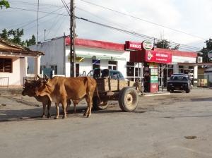 In den Strassen von Viñales