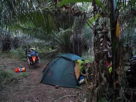 Dschungelcamp auf Ometepe