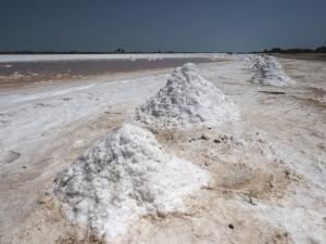 Salzgewinnung in Venezuela
