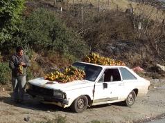 Mandarinenstand in Venezuela