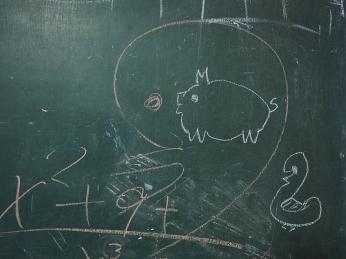 Mathematik mit Schwein