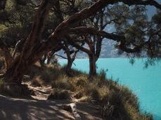 Die Laguna Chinanchocha am frühen Morgen. Man sagt, dann habe sie die schönste Farbe...