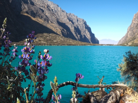 Die Laguna in Richtung Cordillera Negra