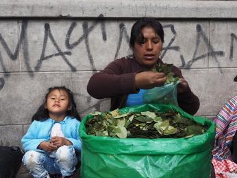 Vor dem Mercado findet man Cocablätter