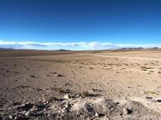 Die Gegend wird immer wüstenartiger und trockener