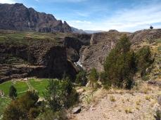 Blick in die Schlucht des Rio Colca