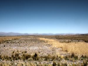 Altiplano auf dem Weg nach Juliaca