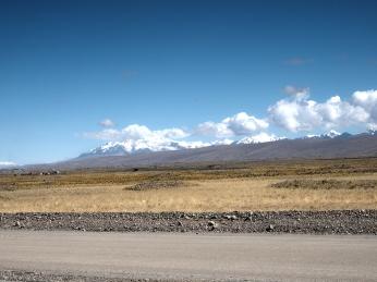 Heute gibt's ein paar Nevados zu sehen
