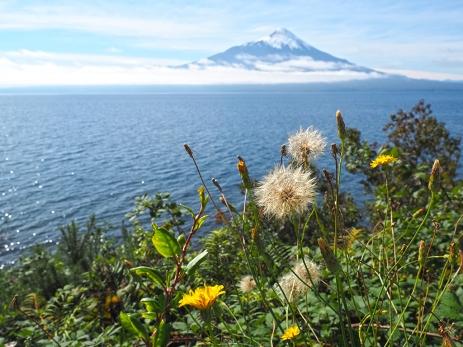 Der Volcan Osorno kommt in Sicht