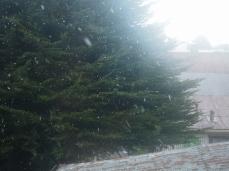 Der erste Schneefall