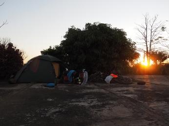 Sonnenuntergang mit Mangobaum