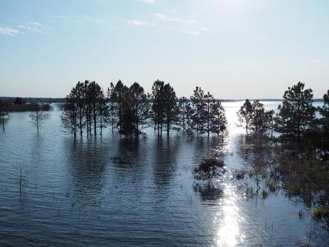 Beim Lago Urugua-i