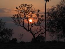Ein schöner und trauriger Sonnenuntergang. Die rote Farbe der Sonne wird durch Aschestaub des brennenden Pantanals verursacht