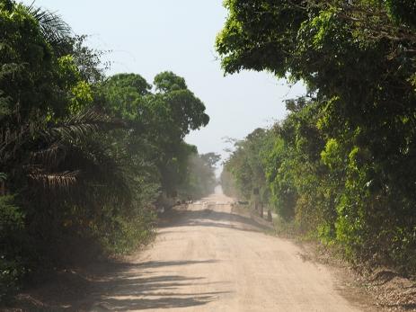 Die Estrada Parque führt ziemlich gerade in den südlichen Pantanal hinein