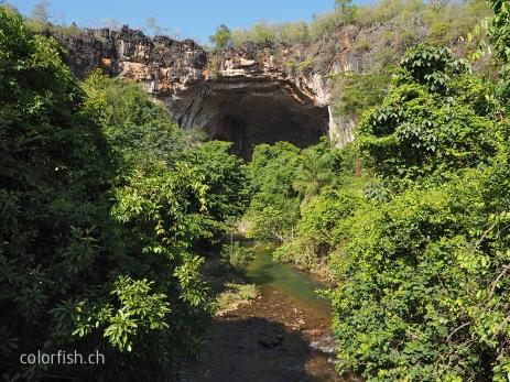 Der gigantische Höhleneingang in die Terra Ronca I