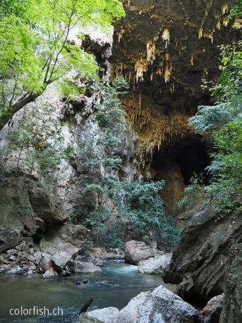 Und ein absolut toller Mix von Grün, Fluss und Höhle