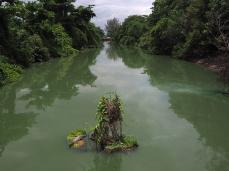 Eine grüne, wenn auch nicht so gut riechende Oase mitten in der Stadt, der Canal do Taxas