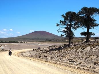 Die Landschaft wechselt stetig, Vulkane kommen dazu