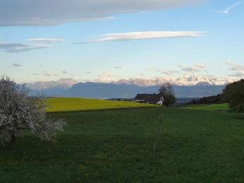 Es ist schon schön in der Heimat mit Blick auf die Alpen