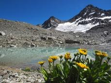 Vom Gletscher ist nicht mehr so viel übrig